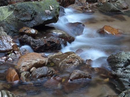 proceeds: La secuencia de monta�a contin�a sobre las piedras en deep forest Foto de archivo