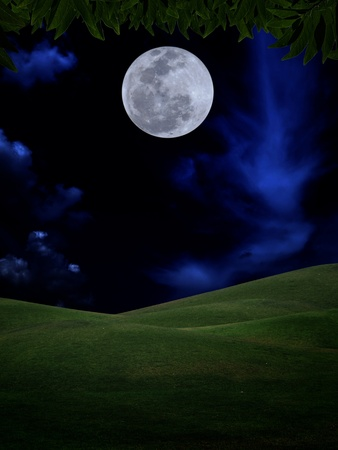 Full moon with green leaf and field of green hill on darkness sky