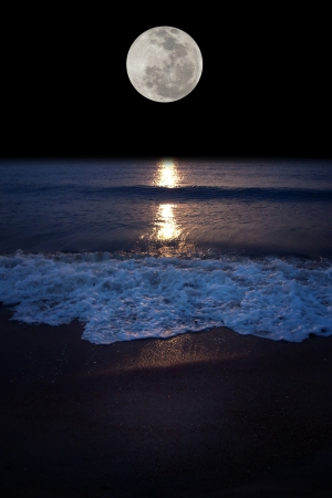 Romantic tropical beach with beautiful full moon photo