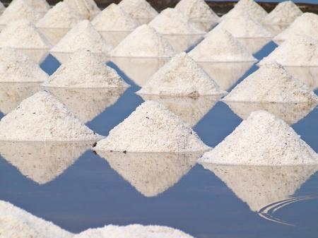 Heap of sea salt in a field prepared for harvest  photo