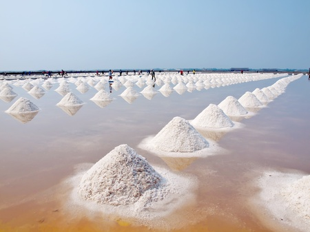 briny: Heap of sea salt in a field prepared for harvest