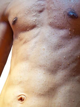 pezones: El torso mojado con gotas de agua contra el fondo blanco