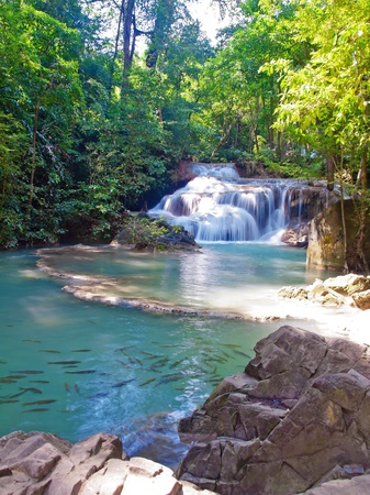 tier: Emerald color water in tier first of Erawan waterfall with a lot of fish, Erawan National Park, Kanchanaburi, Thailand