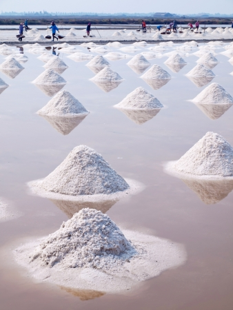 Farmer raking in the salt field in Thailand photo