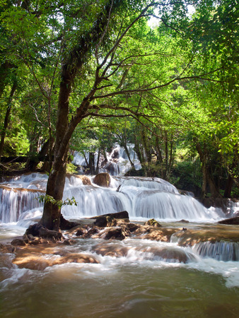Pha Tat Waterfall, Khuean Srinagarindra National Park, Kanchanaburi, Thailand photo