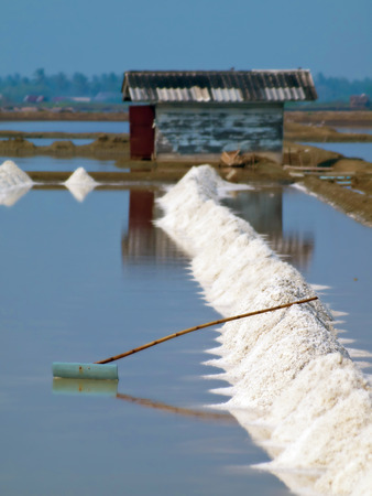 harvest field: Heap of sea salt in a field prepared for harvest with handmade rake. Stock Photo