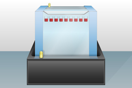 biochemical: Gel electrophoresis device with loaded sample vector illustration