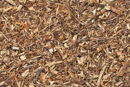 bark mulch: Mulch wood bark material seamless texture background Stock Photo