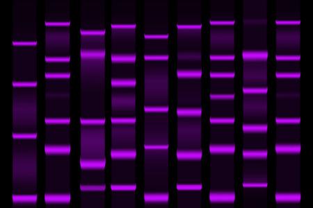 Gel electrophoresis separation electrophoretogram result vector illustration Illustration