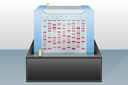 Dispositivo de eletroforese em gel com carregado ilustra Ilustra��o