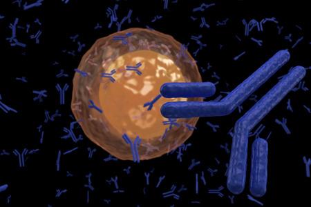 globulos blancos: Glóbulos blancos de linfocitos B de plasma celular produce anticuerpos aislados sobre fondo negro