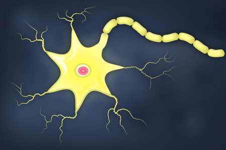 dendrites: Simple illustration of neuron cell and axon
