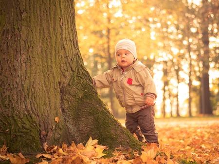 Curious boy in autumn park Stok Fotoğraf