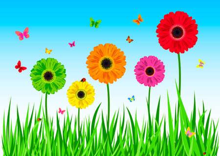 Green grass flowers butterfly. Vector illustration Illustration