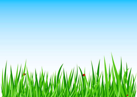 Grass green background vector Stock Vector - 5385173