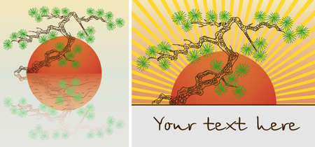 Plant in pot pine bonsai tree. illustration Vector