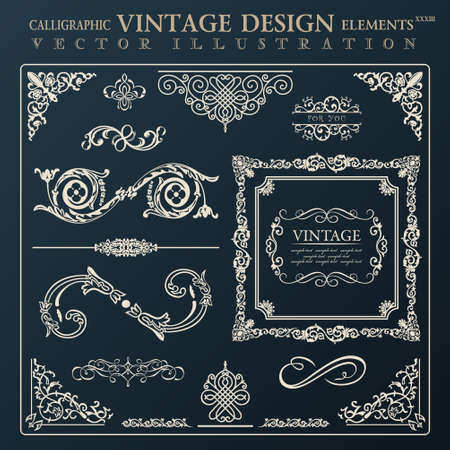 Calligraphic design elements vintage ornament set.