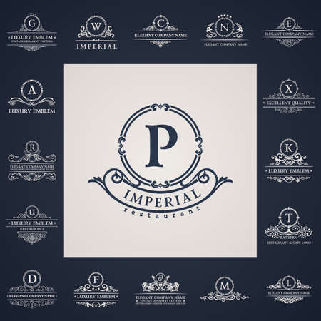 Luxury vintage logo set. Calligraphic letter elements elegant decor. Vector ornament Vettoriali