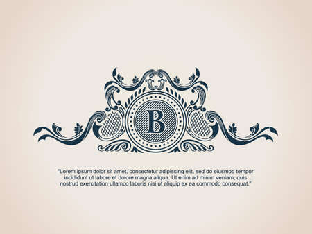 Vintage Decorative Elements Flourishes Calligraphic Ornament. Letter B. Vettoriali