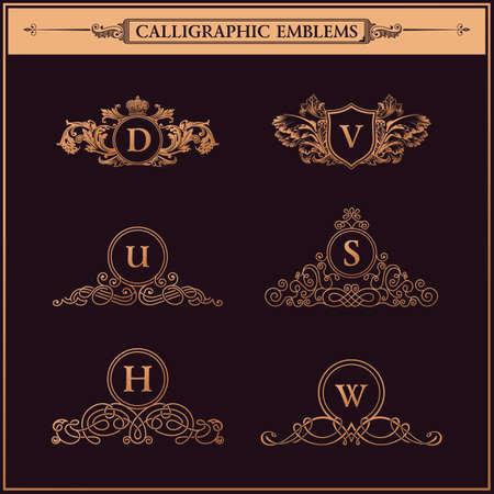 lineas decorativas: Elementos de oro serie Vintage flourishes caligráficos del ornamento