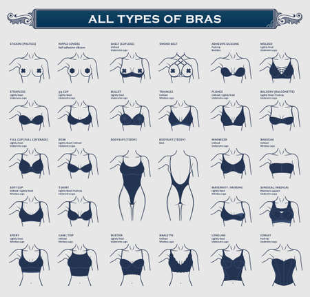 Types of bras. The most complete collection of lingerie