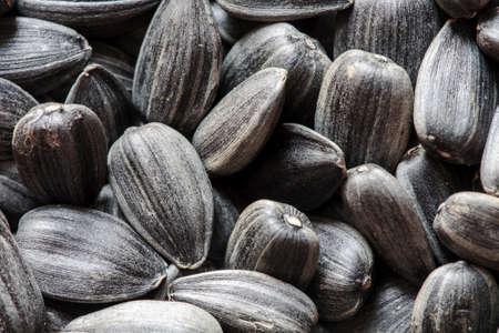semillas de girasol: semillas de girasol, granos de girasol, semillas de cáscara, semillas de girasol de fondo. semillas de girasol foto, negro de la cáscara, las semillas crudas