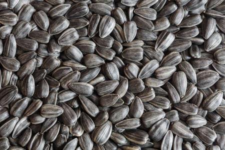 semillas de girasol: sunflower seeds, sunflower grains, seed shell, sunflower seeds background. sunflower seeds photo, black shell, raw seeds Foto de archivo