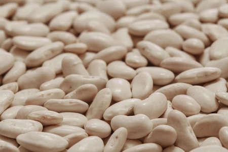raw and dry white azuki beans photo