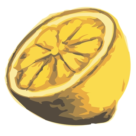 shadowgraph: lemon as clipart