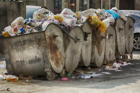 putrefy: trash dump at day time