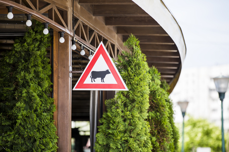 Warning sign attention cow. Silhouette mammal animal with horns on red triangle. Set Road signs 写真素材