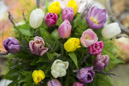 Bunch of flowers.Tulip Flowers. Colors. beautiful purple tulip flowers background Archivio Fotografico