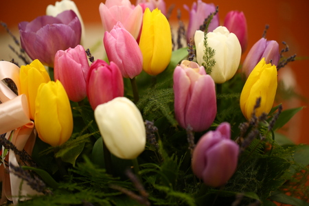 Bunch of flowers. Beautiful purple colored tulip flowers background.