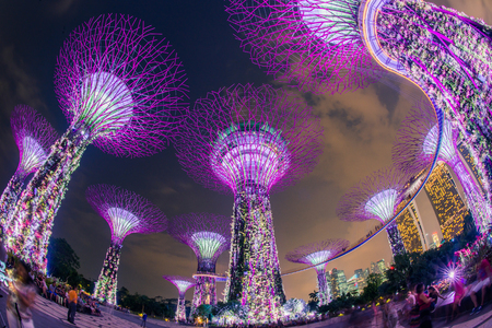 SINGAPORE- April 25: Night view of The Supertree Grove at Gardens by the Bay on April 25, 2014 in Singapore. Spanning 101 hectares, and five-minute walk from Bayfront MRT Station.