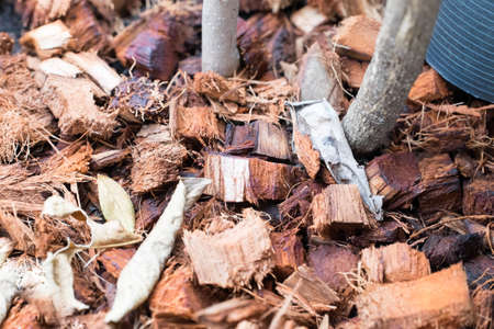 residue: coconut residue  natural fertilizer for plan tree