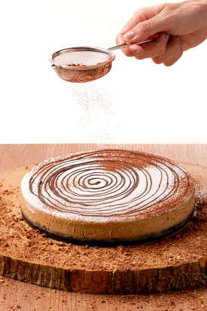 Zelfgemaakte cake Stockfoto