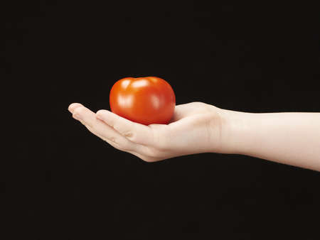 Childs hand with tomatoe and palm facing up photo