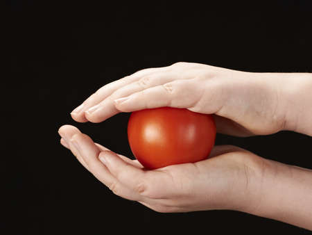 Tomatoe sandwiched between childs hands Stock Photo - 12410158