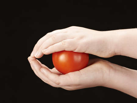 Tomatoe sandwiched between childs hands photo