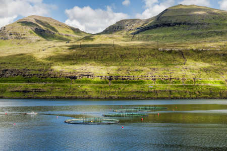Salmon farming in the Faroe Islands photo