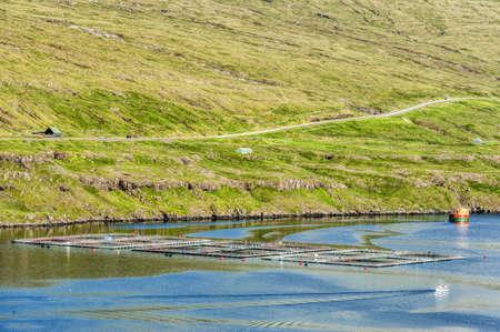 Salmon farming in the Faroe Islands photo