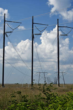 electric grid: Electric conducting poles in a field against blue sky background in a rural setting  Stock Photo