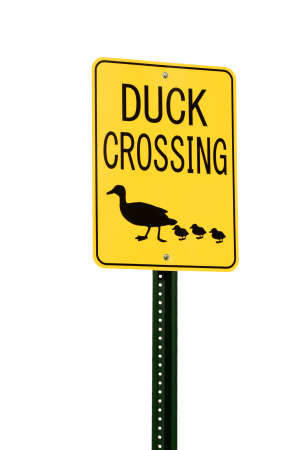 Yellow Duck Crossing traffic or road sign isolated on white background with copy space  Stock Photo