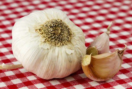 Fresh garlic isolated in red and white checkered table cloth  photo