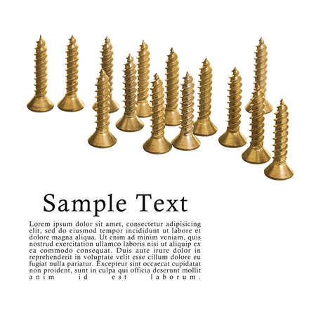 Gold colored screws isolated on white background with sample text. photo