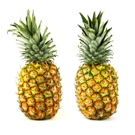Two golden delicious tropical pineapple fruits isolated on white background.