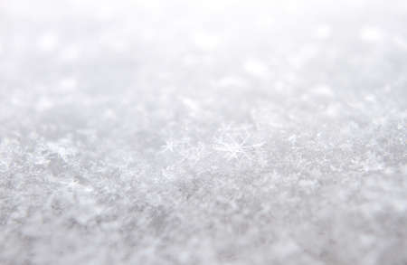 Fresh white snow with focus on snowflake with copy space. Stock Photo