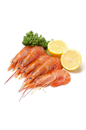 argentine red shrimp Stock Photo