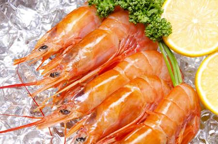pescados y mariscos: gamba roja argentina Foto de archivo