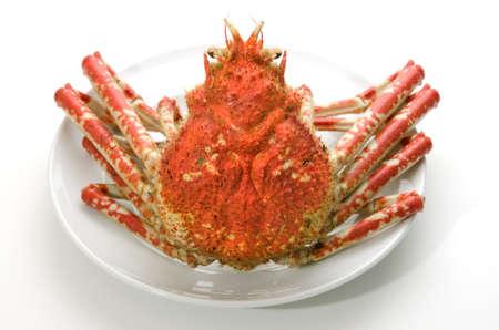 crustacea: giant crab Stock Photo